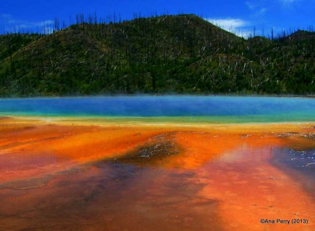 YS_Midway_grand Prismatic sp2 (2)