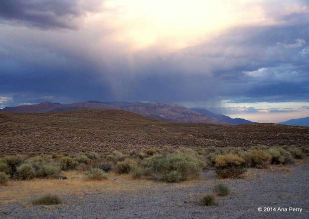 CA_westgard pass9